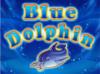 blue-dolphin-100x74