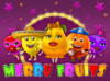 merry-fruits-100x74